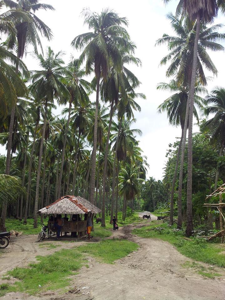 PhilippinesKiblawan03