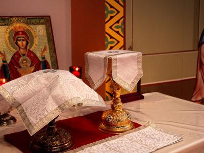 Да ли су Свете Тајне које служе грешни свештеници валидне? (ВИДЕО)